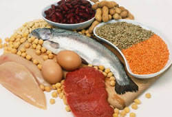 using high protein diets for weight loss - the facts