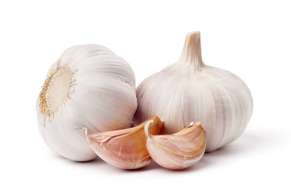 Garlic Burns Belly Fat